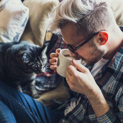 Jak czyścić koci mocz z tekstyliów?
